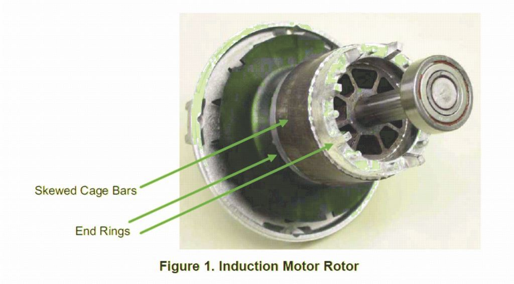 induction rotor