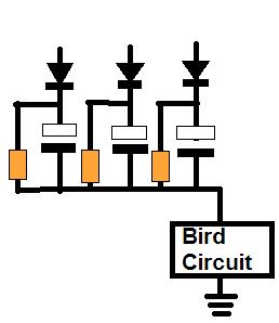 bird sound timer circuit